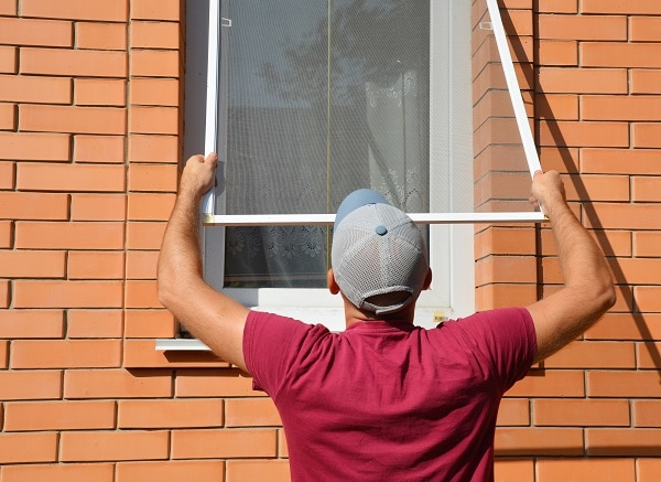 homemade window screen cleaner